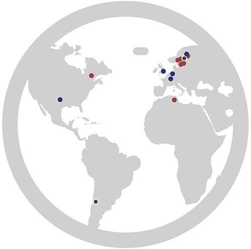 Globe Xore markets